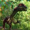 Dilophosaurus04