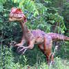 Dilophosaurus02