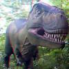 Tyrannosaurus_Rex01