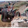 Deinonychus in the ruins of old Kamari