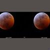 Lunar Eclipse 20 Jan 2019, 11:58 PM