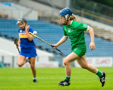Limerick's Dearbhla Egan in action