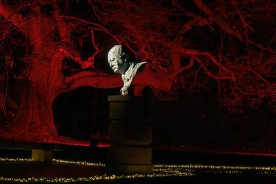 Christmas at Blenheim Palace 2019, Illuminated Light Trail - 31/12/2019@19:23