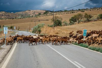 3tourschalenge-Vuelta-2017-000