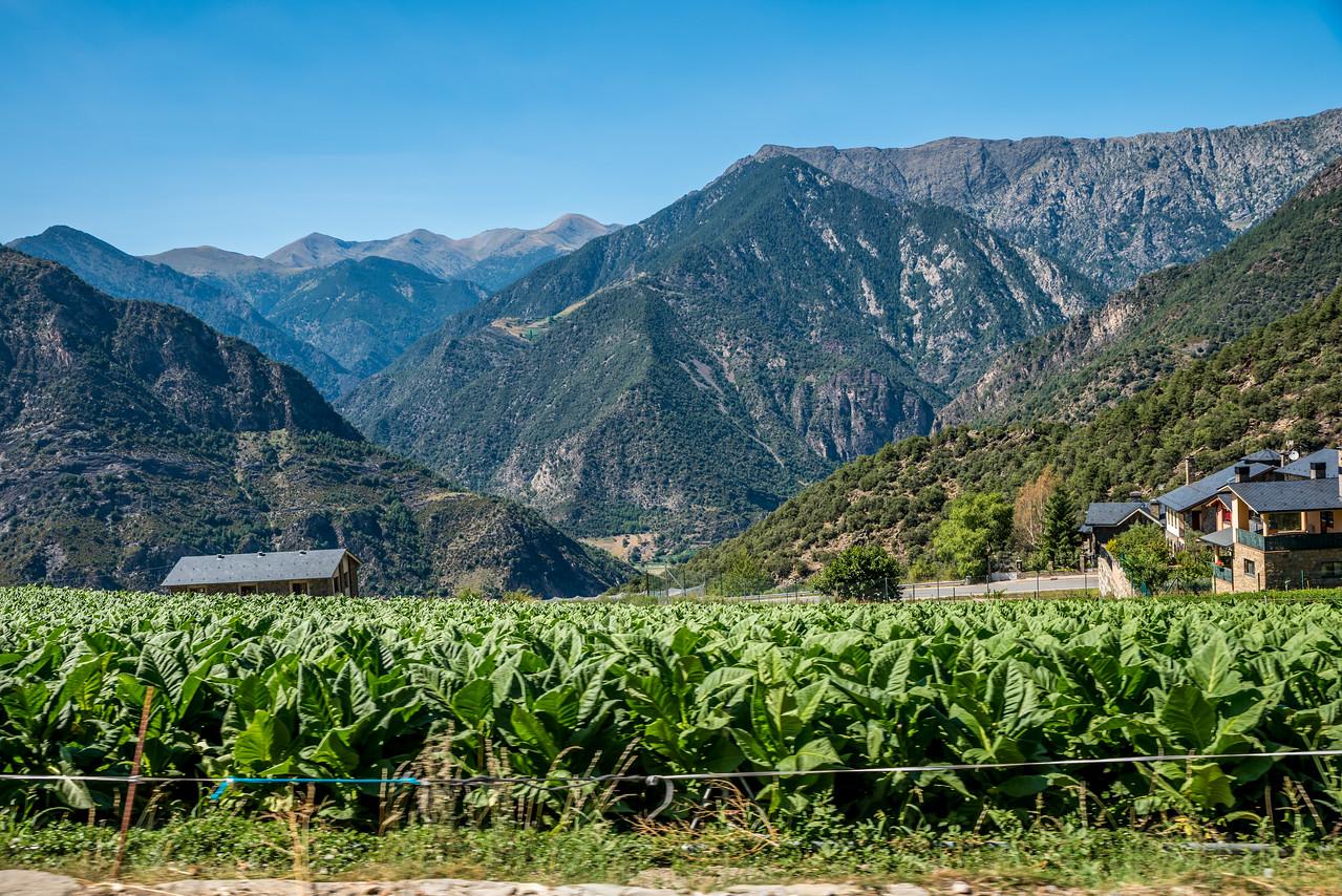 3tourschalenge-Vuelta-2017-340