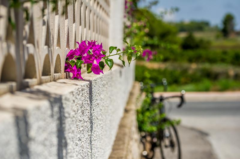 3tourschalenge-Vuelta-2017-415