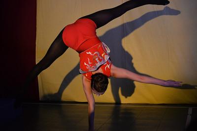 AERIAL  ARTS  NYC  2015    -    CATS  Gymnasium,  49th  Street,  Manhattan  NYC