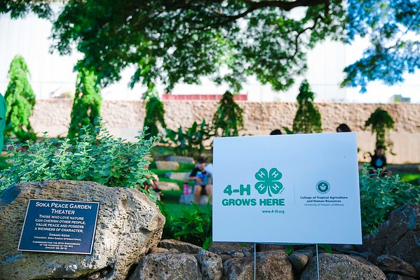 4-H Camp at UH Urban Garden (Event Photos)