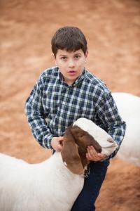 Hays_County_Show-6632