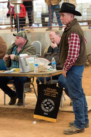 Hays-County-Show-6252