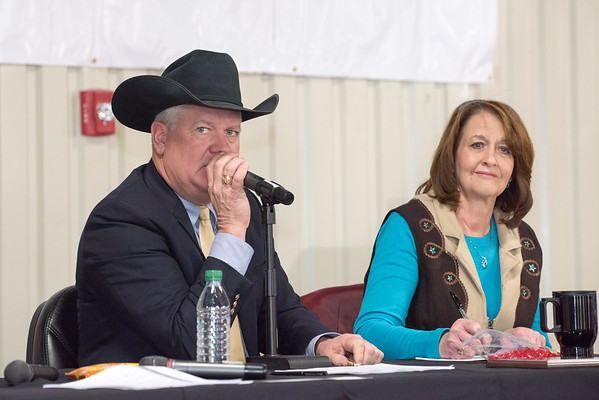 Hays County Show Auction, 2015