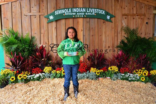 4-H Livestock Show 2014