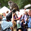 Marcia and Mark Wilson display a Barred Owl during their presention Eyes on Owls at the 4-H fair in Westford. SUN/ David H. Brow