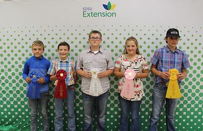 Junior Livestock Judging: Swine - Top Individuals