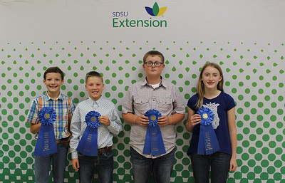 Junior Livestock Judging: Oral Reasons - 1st Place Team