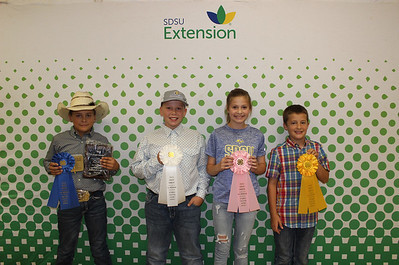 Beginner Livestock Judging: Overall - Top Individuals