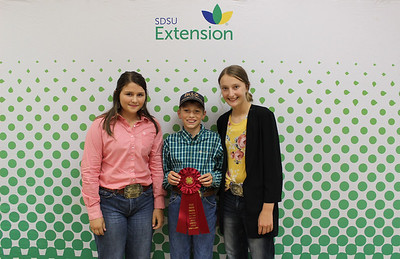 Junior Livestock Judging: Sheep and Goat - 2nd Place Team