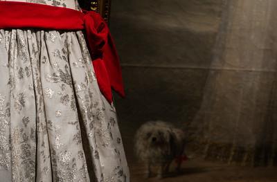 Goya / Duquesa de Alba I