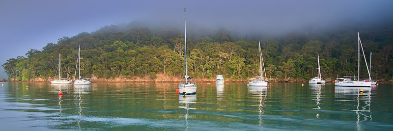 Misty Morning Towlers Bay.