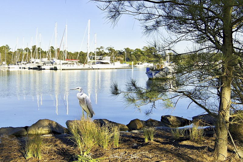 Marmong Point Marina. Lake Macquarie.