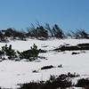 Pic de Nore en hiver, Montagne Noire, Aude