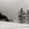 Vent d'hiver, Montségur