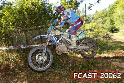 FCAST 20062