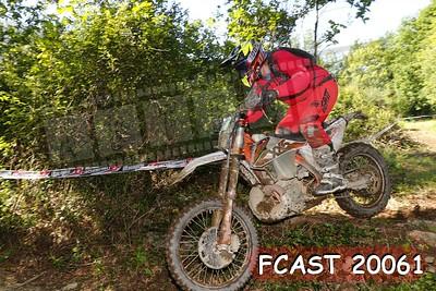 FCAST 20061