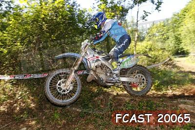 FCAST 20065