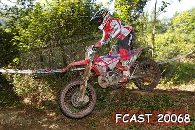 FCAST 20068