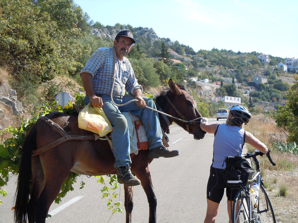 "This fellow was riding his horse along the narrow road. He was carrying grape vines on the side of his horse. He did stop so we could take his picture. I think the look on his face says ""Crazy Tourists!"""