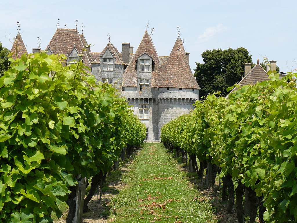 This is the view through the vineyard of the Monbazillac Chateaux, France