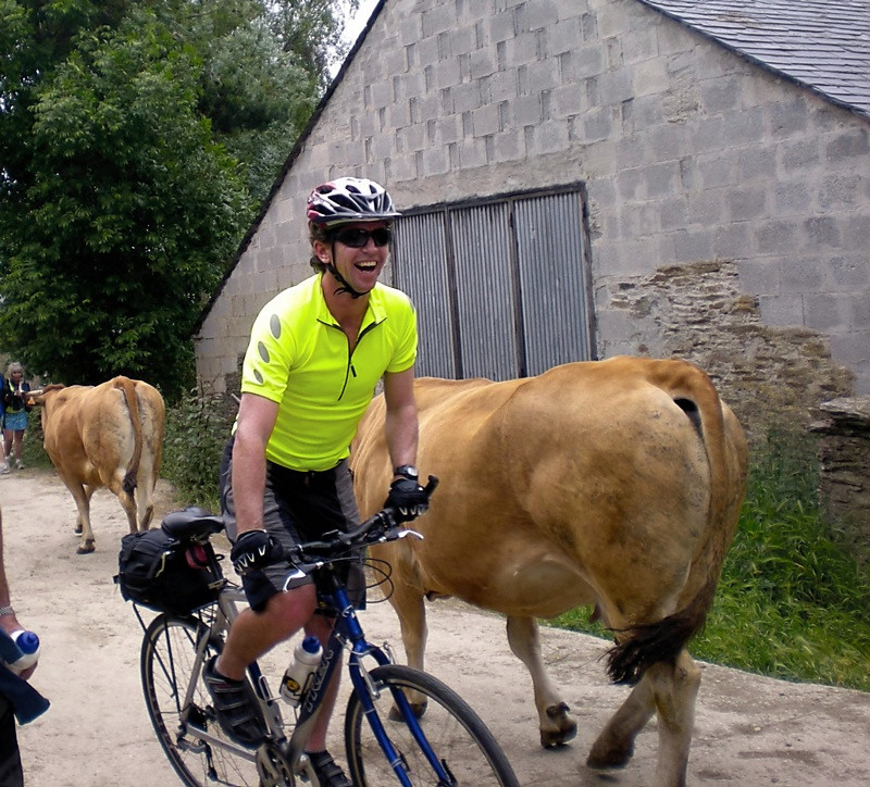 """Share the Road"" Cyclists and walkers alike have to share the road with a farmer bringing his herd of cows from his pasture below the Camino de Santiago up to his barn for milking."