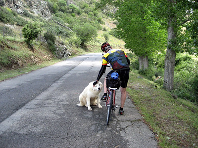Stopping to say hello to a friend in Corsica!