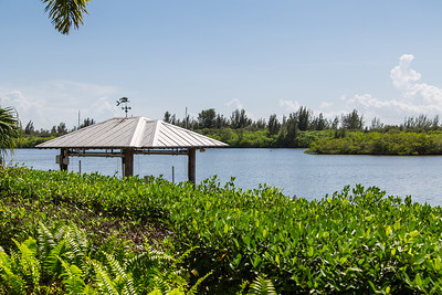 4125 Indian River Drive East - Central Beach-534