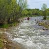 Verde River Institute Float Trip, Tapco to Tuzi, 4/15/17
