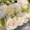 Soft romantic table settings for a wedding, suitable for background of a menu, invitation or wedding brochure/magazine.