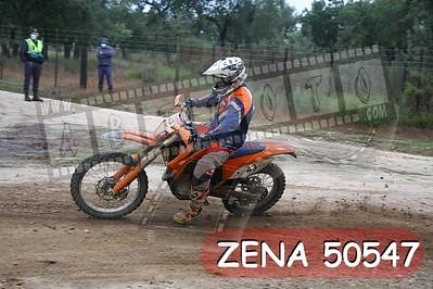 ZENA 50547