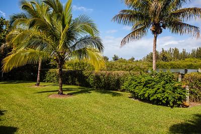 430 Live Oak Drive - Orchid Isle Estates-13
