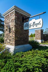 435 Stoneybrook Farm Court - Stoneybrook Farms-15