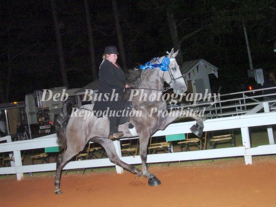 CLASS 42   WALKING 4 YRS OLD AMATEUR RIDER SPECIALTY