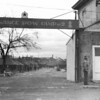 Title: Ordnance POW camp #2<br /> <br /> Date: 1945.08.xx<br /> <br /> Location: Leghorn, Italy<br /> <br /> Notes from Yasunori: Ordnance POW Camp #2.  Guarding prisoners.  Little negative incidents with POW's.  Well trained and disciplined.  Once captured or surrendered, they acted accordingly.  What amazed me was their industriousness, tried to make camp as pleasant as possible; had their own entertainment group; made physical appearance of campsite like home. They accepted their circumstances and made the best of things.  We used to have the prisoners do certain chores.  The administration of their camp and personnel was their responsibility to carry out.  German prisoners were very obedient and respectful.  <br /> <br /> As a platoon sergeant, Yasunori Deguchi had his own quarters; prisoners came every day to do janitorial chores.  During nearly 3 months of using their service, Deguchi never experienced a single occasion of missing items.  They even asked for the cigarette butts before taking them.<br /> <br /> Photo courtesy of Yasunori Deguchi. Copyright retained by the Estate of Yasunori Deguchi.