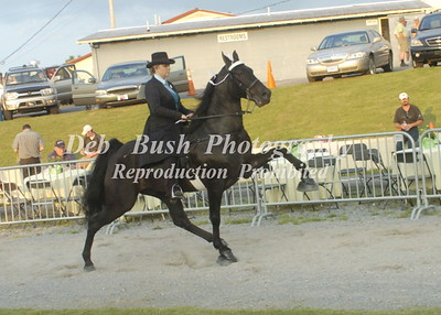 CLASS 13   LADIES  AMATEUR WALKING  SPECIALTY  (18 & OVER)
