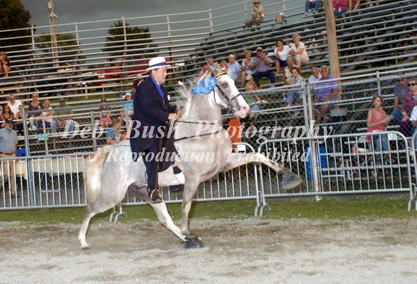 CLASS 15   AMATEUR  50 & OVER  WALKING  SPECIALTY