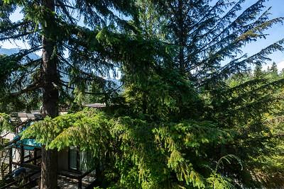 W45 Bedroom 2 View