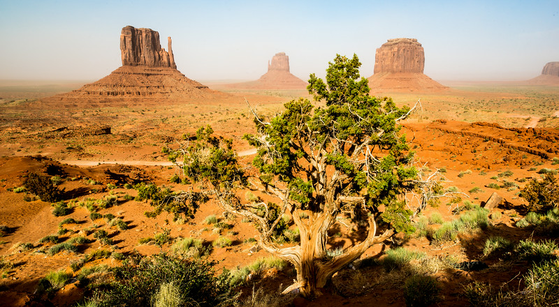 Monument Valley Dust Storm Utah! Nikon D800E Dr. Elliot McGucken Fine Art Landscape & Nature Photography for Los Angeles Gallery Show !