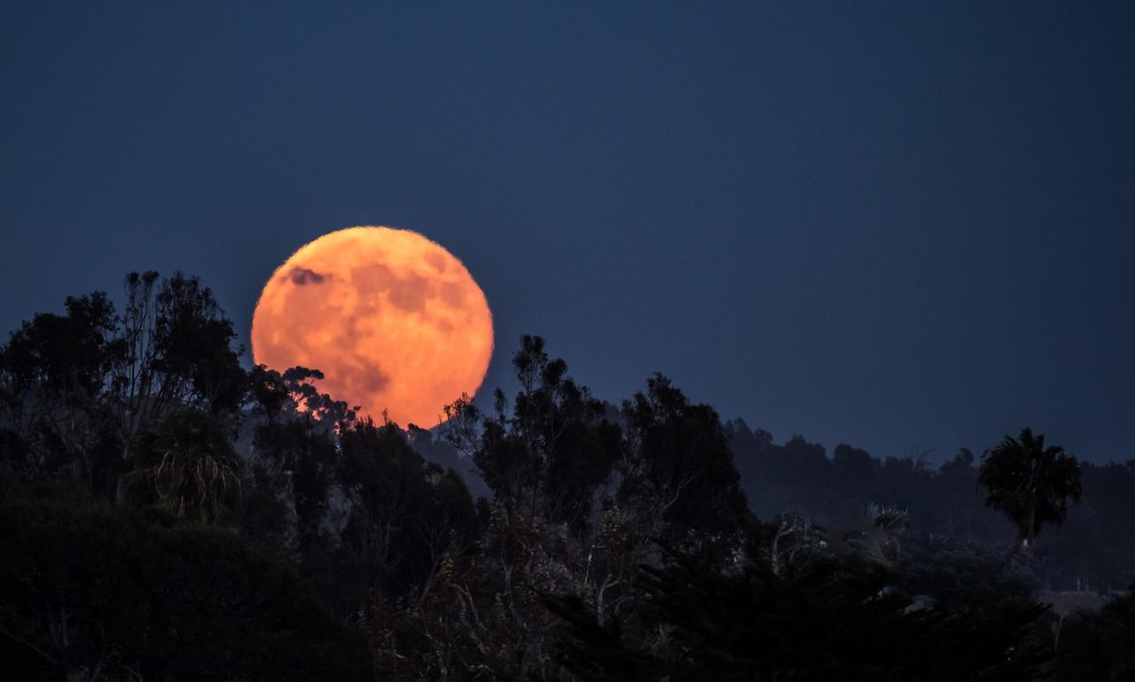 Malibu Moonrise!  Full Moon Moonrise!  Nikon D810 & Tamron SP 150-600mm f/5-6.3 Di VC USD Lens for Nikon