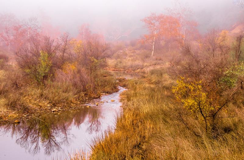 Nikon D810 Photos Misty Malibu Morning! Dr. Elliot McGucken's Hero's Odyssey Fine Art Landscape Photography