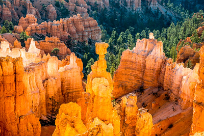 Bryce Canyon & Thor's Hammer! Bryce National Park Utah!  Nikon D800E Dr. Elliot McGucken Fine Art Landscape & Nature Photography for Los Angeles Fine Art Gallery Show ! National Park Utah!  Nikon D800E Dr. Elliot McGucken Fine Art Landscape & Nature Photo
