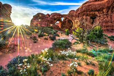 Utah National Parks!  Nikon D800E Dr. Elliot McGucken Fine Art Landscape & Nature Photography for Los Angeles Fine Art Gallery Show !